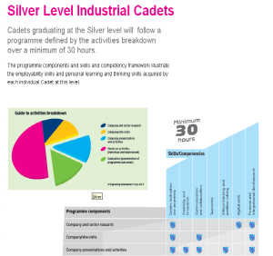 Example Silver Level Industrial Cadets